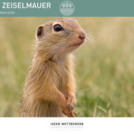 """Ziesel an der ZEISELMAUER von Mag. Irene Zvieger – Idee der Woche zur """"Zukunft am Fohlenhof"""""""