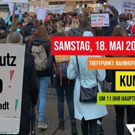 Klimaschutz-Demo in Wiener Neustadt